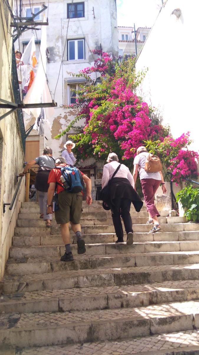 Street in Alfama, Walking Holidays in Lisboa