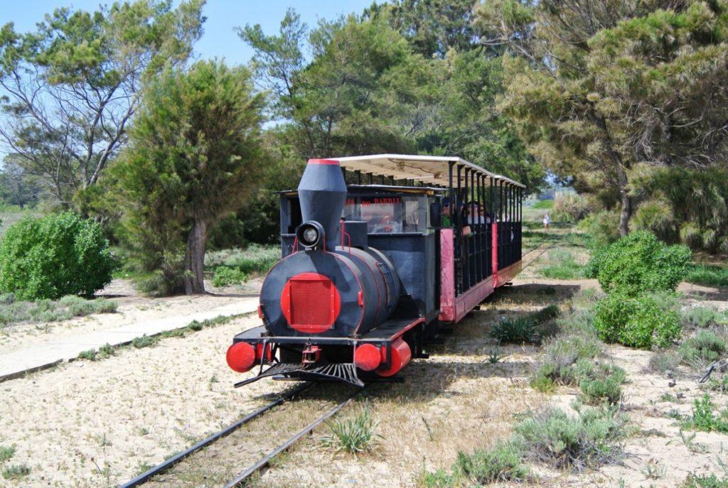 Barril Beach Train