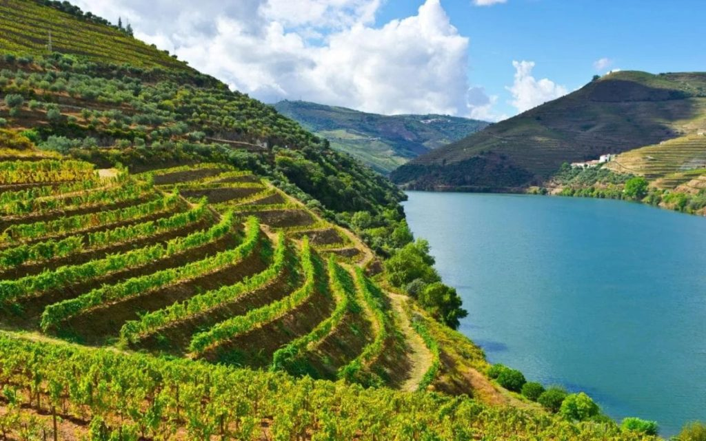 Rio Douro at the heart of the demarcated port-wine region.