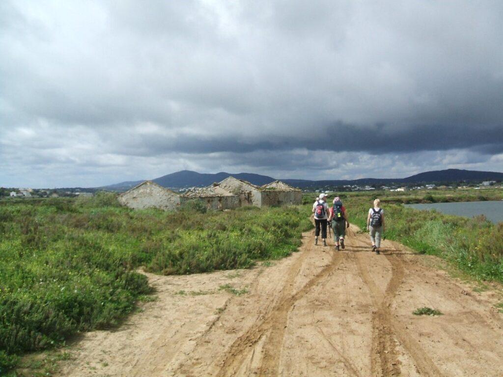 Walking in the Ria Formosa saltpans Tavira