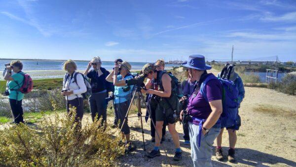 Birding Group Algarve