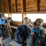 Birdwatching and Wildlife Holiday