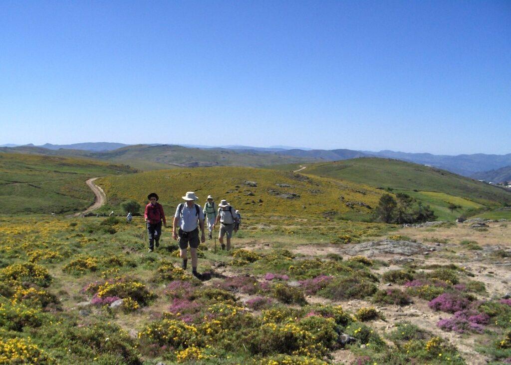Group Walking in Peneda National Park Portugal