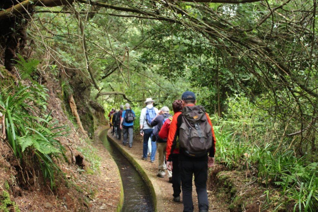 Levadas Madeira walking