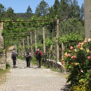 Group Walking in Minho, wine region